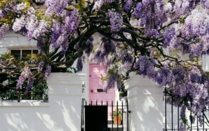 Where to live in Notting Hill